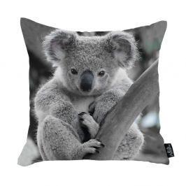 Povlak na polštář Apolena Koala, 45 x 45 cm