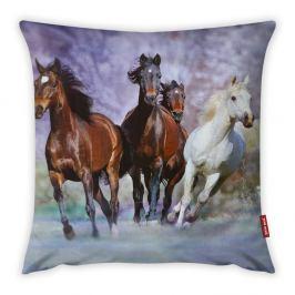 Povlak na polštář Vitaus Horses, 43 x 43 cm