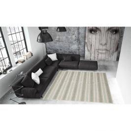 Vysoce odolný koberec vhodný do exteriéru Floorita Riga,160x230cm