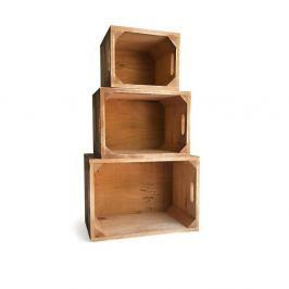 Sada 3 dřevěných boxů z borovicového dřeva Really Nice Things 1945
