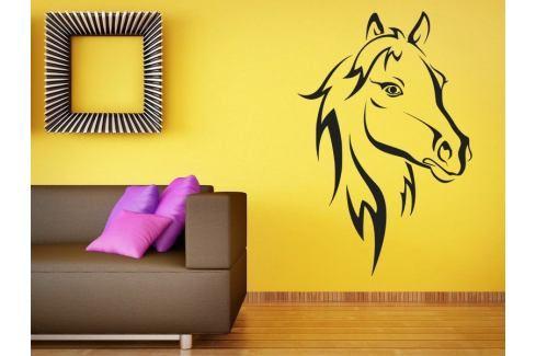 Samolepka na zeď Kůň 011 Kůň