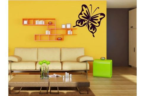 Samolepka na zeď Motýl 005 Motýl