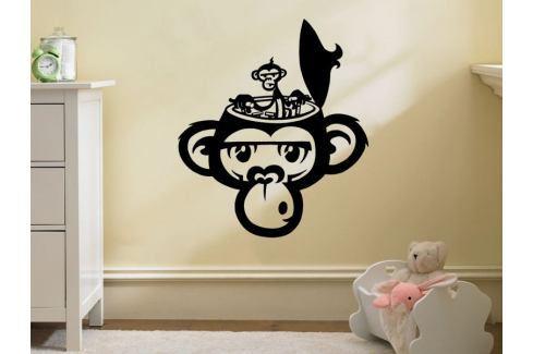 Samolepka na zeď Opička 002 Opička