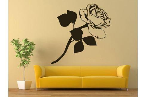 Samolepka na zeď Růže 009 Růže