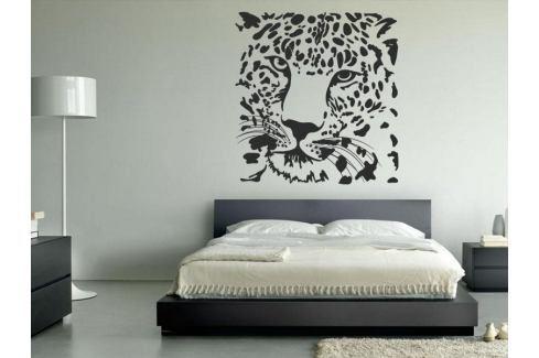 Samolepka na zeď Tygr 008 Tygr