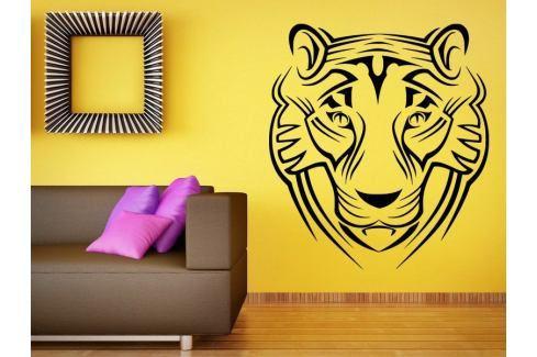 Samolepka na zeď Tygr 009 Tygr