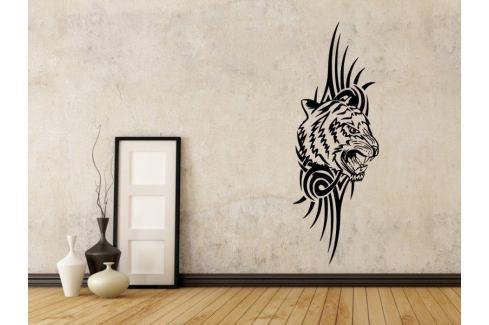 Samolepka na zeď Tygr 010 Tygr