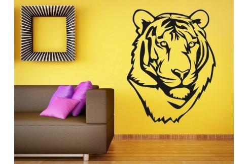 Samolepka na zeď Tygr 011 Tygr