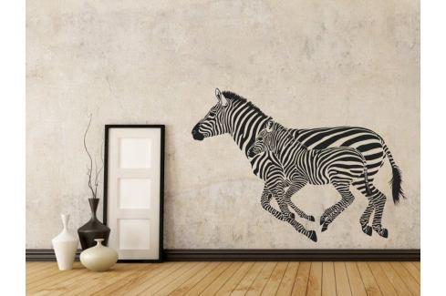 Samolepka na zeď Zebra 001 Zebra