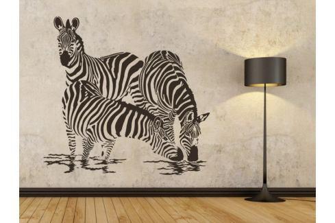 Samolepka na zeď Zebra 003 Zebra