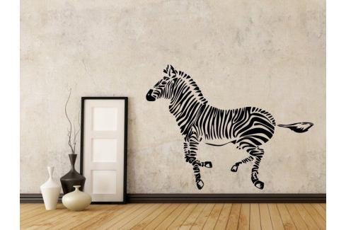 Samolepka na zeď Zebra 012 Zebra