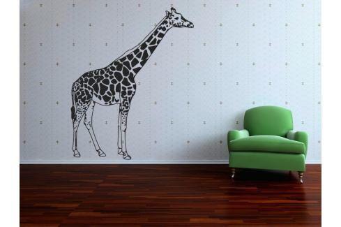 Samolepka na zeď Žirafa 002 Žirafa