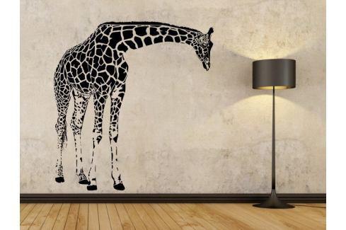 Samolepka na zeď Žirafa 004 Žirafa