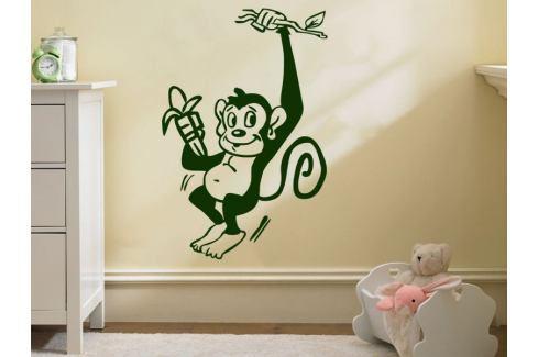 Samolepka na zeď Opička 006 Opička