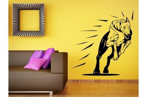 Samolepka na zeď Chrt 001 Chrt