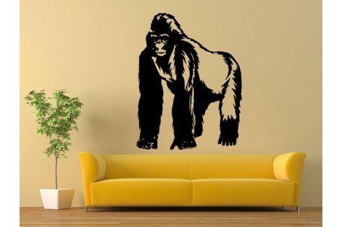 Samolepka na zeď Gorila 001 Gorila
