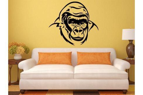 Samolepka na zeď Gorila 002 Gorila