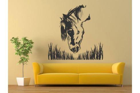 Samolepka na zeď Kůň 021 Kůň