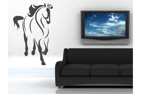 Samolepka na zeď Kůň 024 Kůň