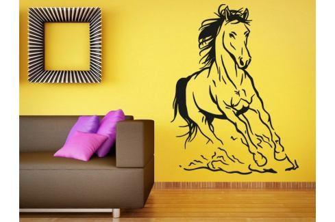 Samolepka na zeď Kůň 027 Kůň