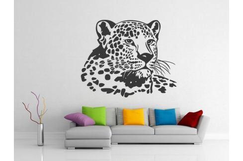 Samolepka na zeď Leopard 006 Leopard