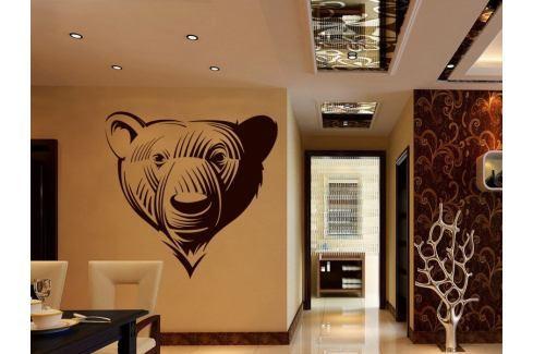 Samolepka na zeď Medvěd 001 Medvěd
