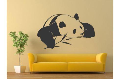 Samolepka na zeď Panda 003 Panda