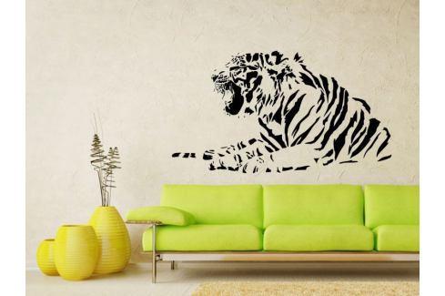Samolepka na zeď Tygr 012 Tygr