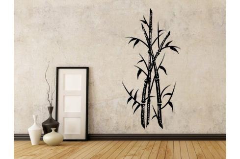 Samolepka na zeď Bambus 004 Bambus