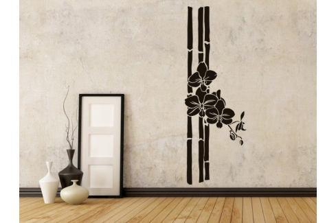 Samolepka na zeď Bambus 005 Bambus