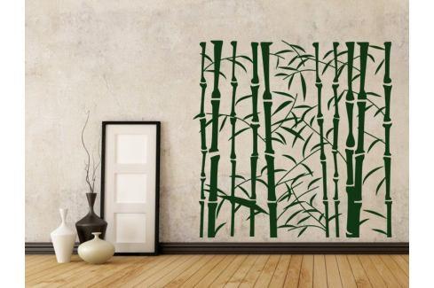Samolepka na zeď Bambus 008 Bambus