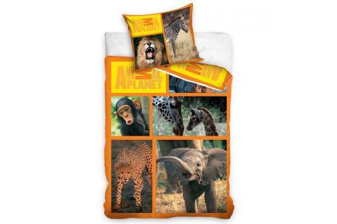 Carbotex povlečení Animal Planet - Safari 160x200 70x80, 160 x 200 cm, 70 x 80 cm Ložní povlečení